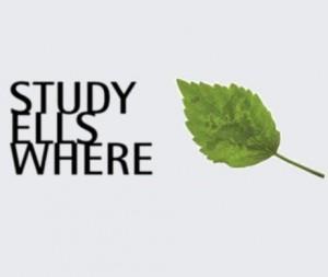 study els